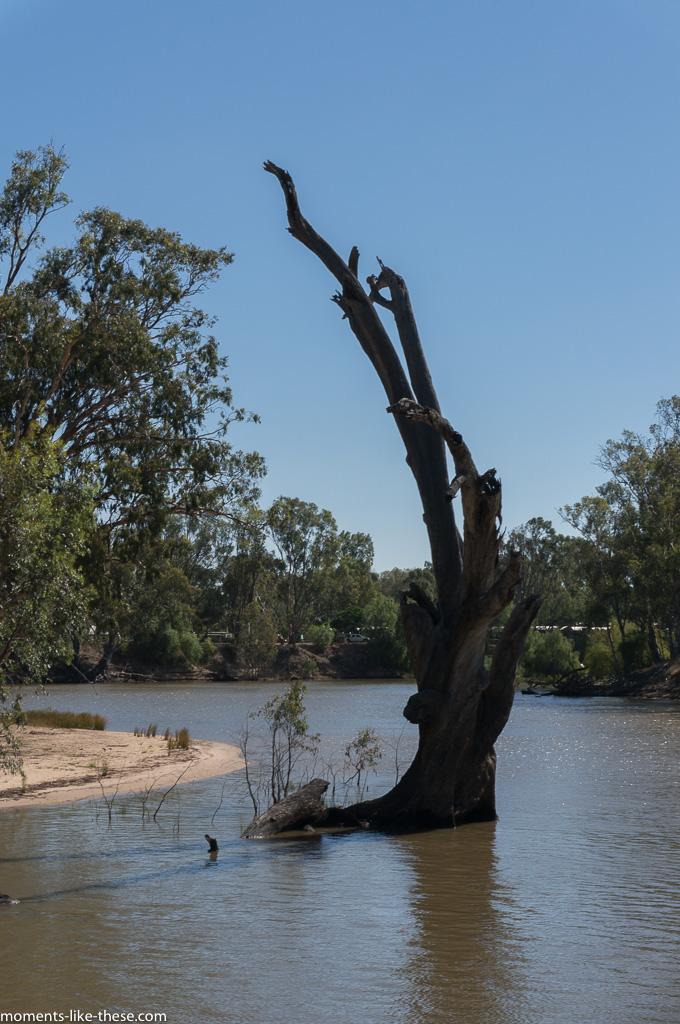 Edward River
