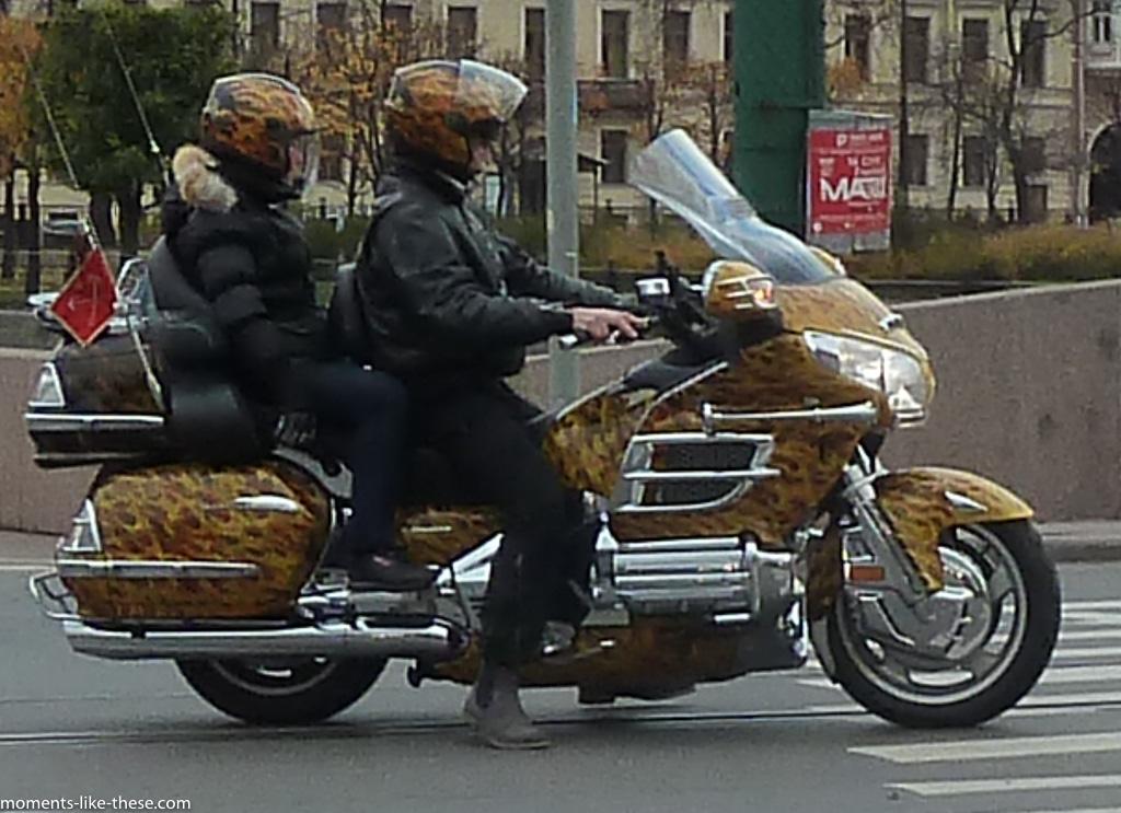 Leopard skin pillbox hat riders