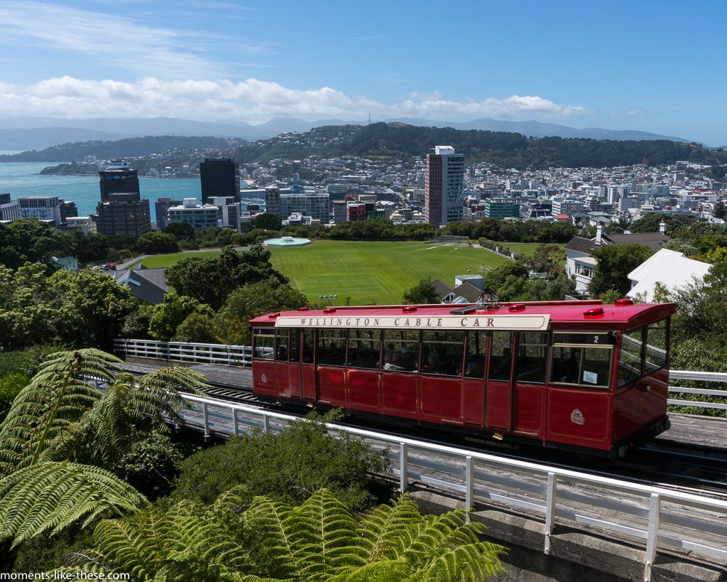 Cable car view, Wellington, NZ