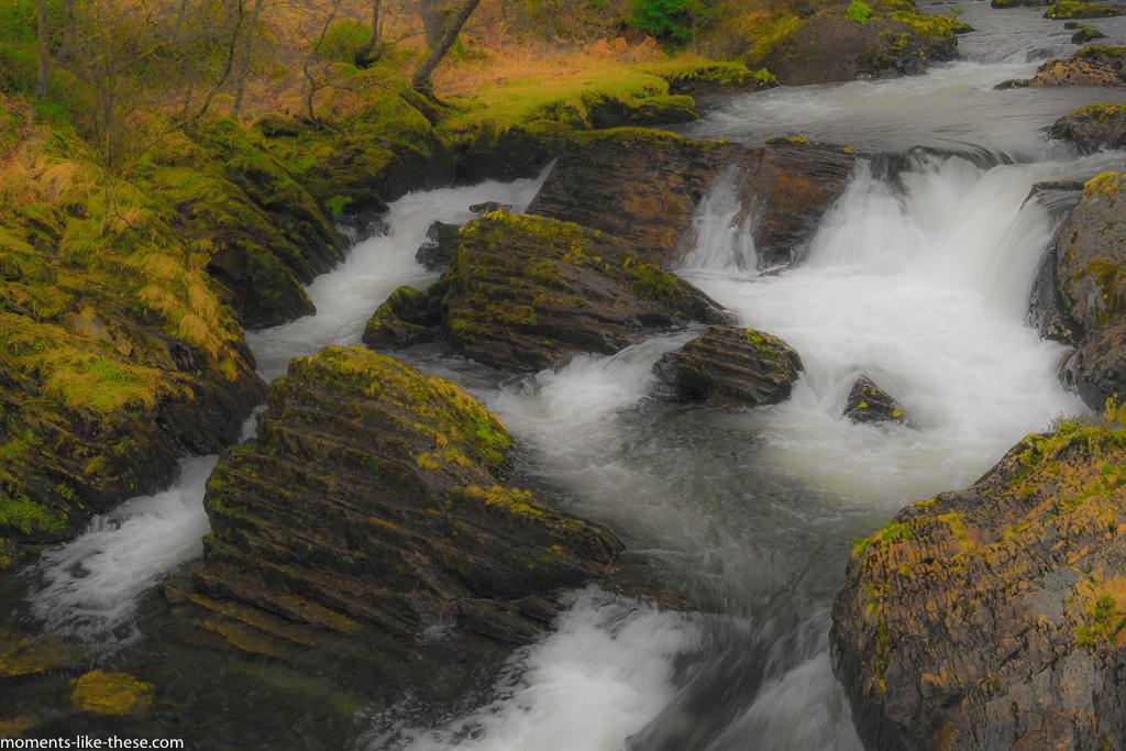 River study - 2